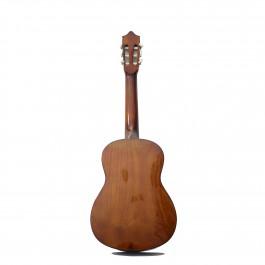 Guitar C30