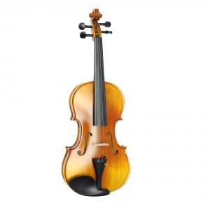 Violin Vân Vẽ