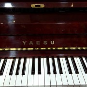 yaesu3