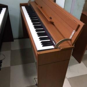 Roland DP900